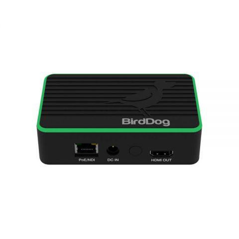 BirdDog Flex 4K Out